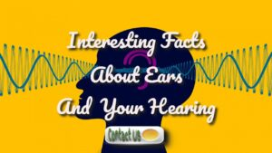 interesting ear facts