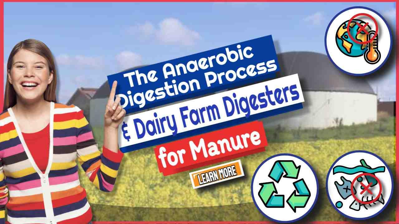 Dairy Farm Digesters
